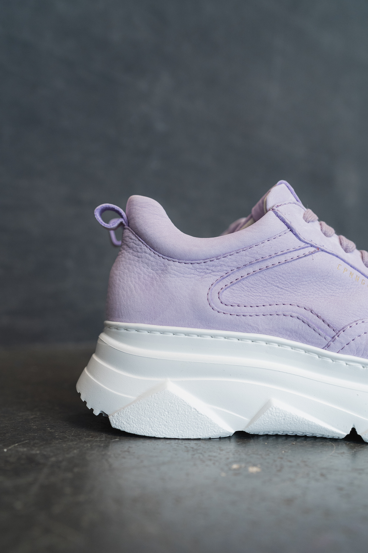 CPH60 nabuc lavender - alternative 2