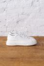 CPH307 vitello white