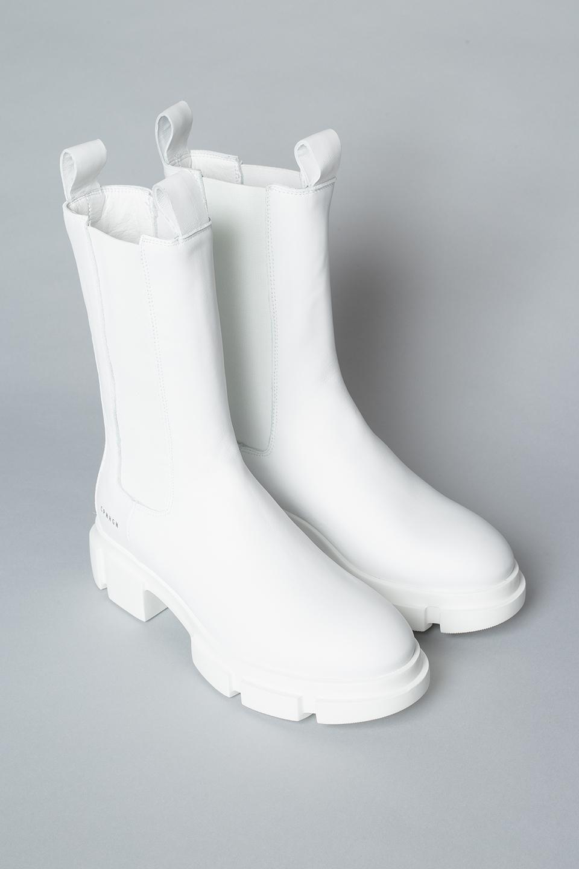 CPH500 vitello white